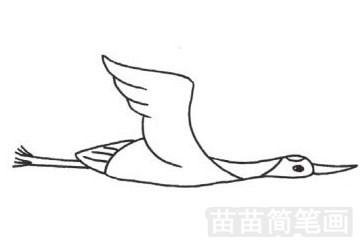 丹顶鹤简笔画图片大全 画法