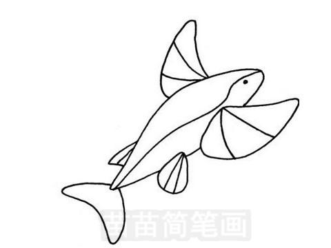 飞鱼简笔画图片大全 画法