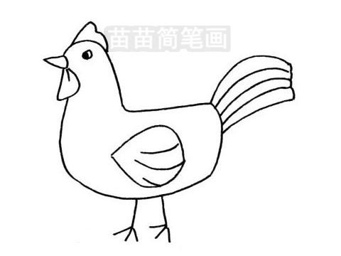 公鸡简笔画图片大全 教程