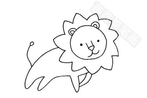 简笔画 动物简笔画 野生动物简笔画 >> 正文内容   公狮小知识:公狮的
