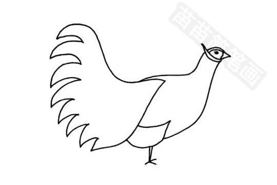 褐马鸡简笔画图片大全,教程