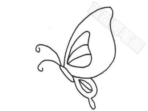 小蝴蝶简笔画图片大全 教程