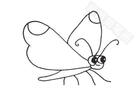 蝴蝶简笔画图片大全作品四