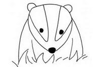 獾简笔画图片大全、教程