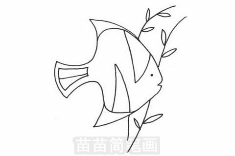 黄鳍鲳简笔画大图
