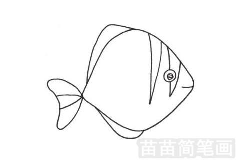 黄鳍鲳简笔画图片大全作品一