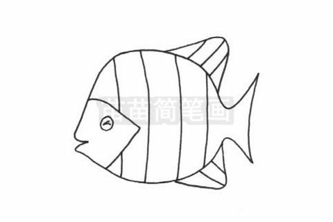 黄鳍鲳简笔画图片大全作品二