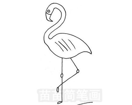 火烈鸟简笔画图片大全作品五
