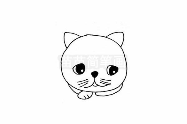 加菲猫简笔画图片步骤四