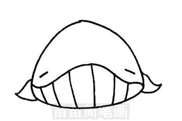 鲸简笔画图片步骤三