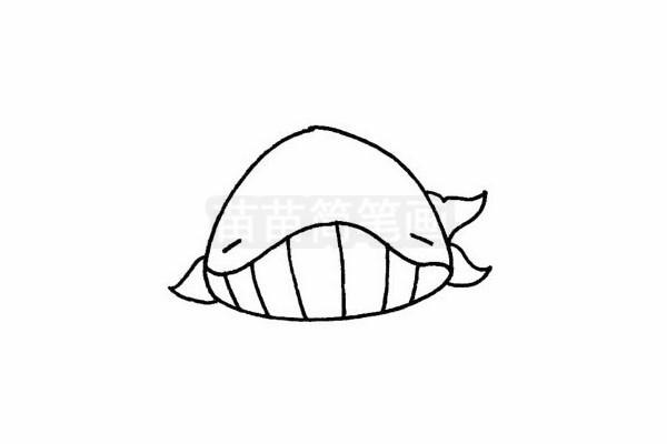 鲸简笔画图片步骤四