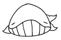 鲸简笔画图片大全、教程