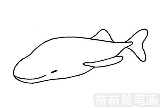 鲸简笔画图片大全作品一