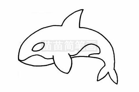 鲸简笔画图片大全作品二