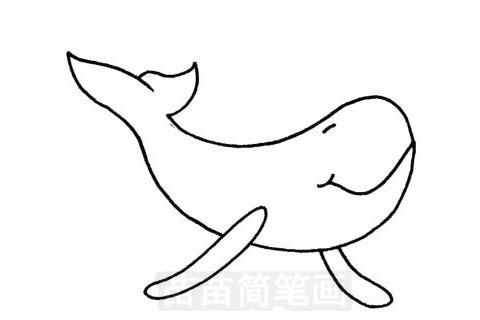 鲸简笔画图片大全作品五