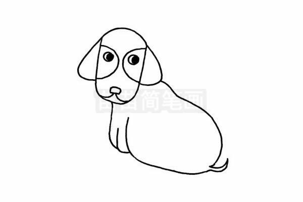 腊肠犬简笔画图片步骤四