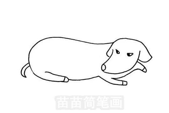 腊肠犬简笔画图片大全作品五