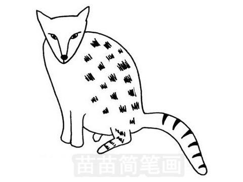 灵猫简笔画图片大全 教程