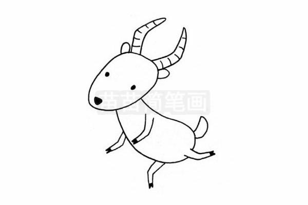 羚羊简笔画图片步骤四