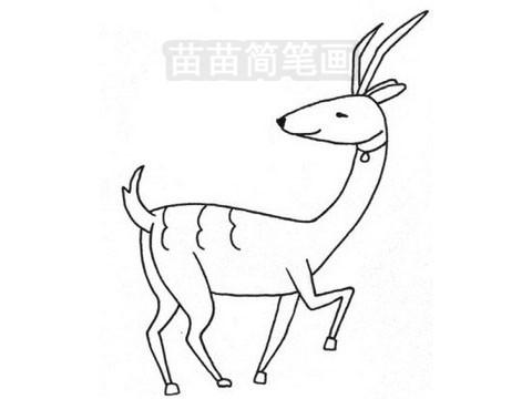 羚羊简笔画图片大全作品三