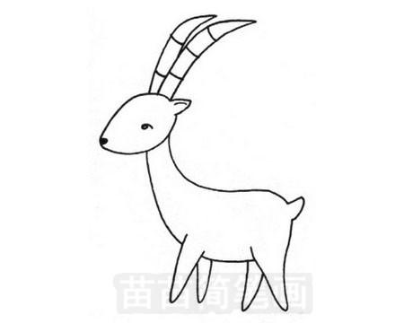 羚羊简笔画怎么画 图片大全