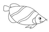 龙鱼简笔画图片大全、教程