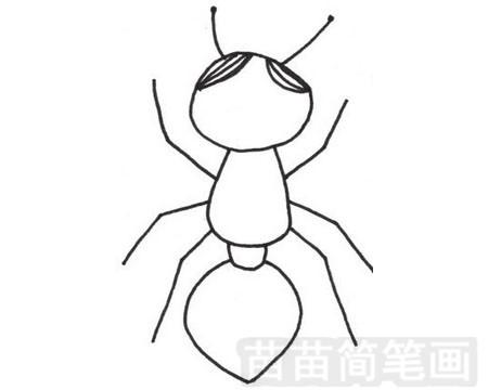 蚂蚁简笔画图片大全作品一