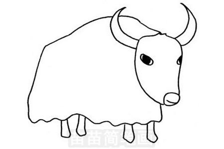 牦牛简笔画图片步骤三