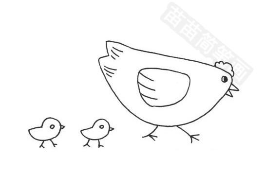 母鸡简笔画图片大全 画法