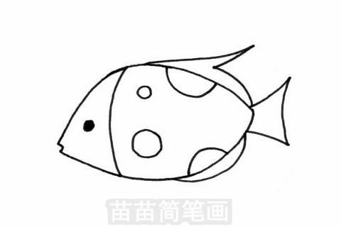 步骤一:先画出鱼身的轮廓.