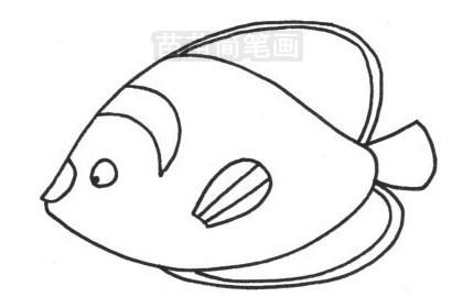 热带观赏鱼简笔画图片大全,教程