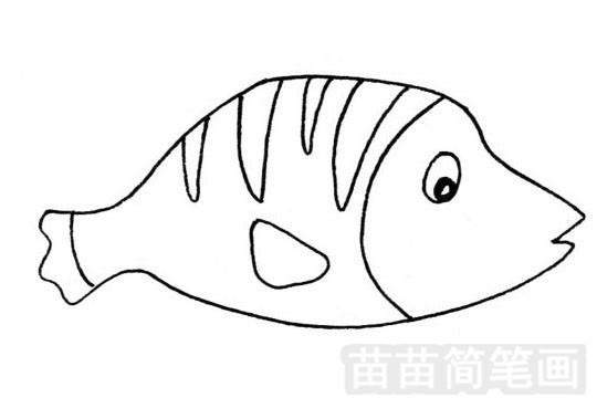 深海鱼简笔画怎么画 图片大全