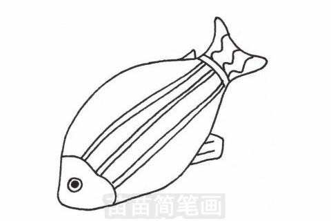 深海鱼简笔画图片大全 教程