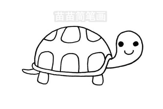 乌龟简笔画图片大全 画法