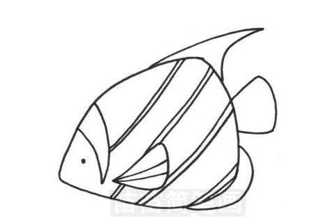 小丑鱼简笔画图片大全 画法