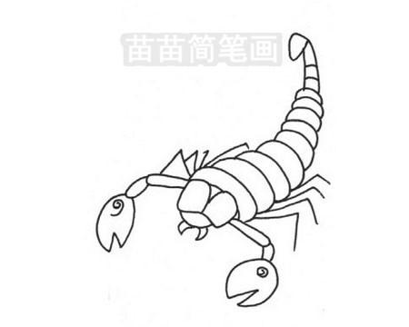 蝎子简笔画图片大全作品三