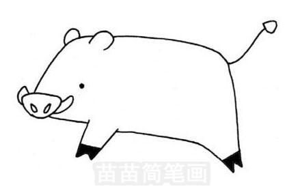 野猪简笔画图片大全 教程