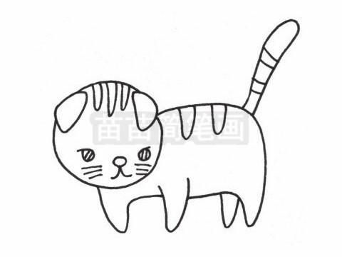 折耳猫简笔画图片大全作品二