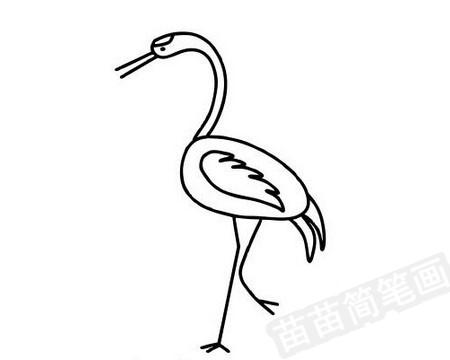 丹顶鹤简笔画图片大全 教程
