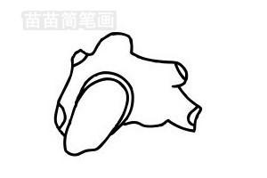 生姜简笔画图片步骤五