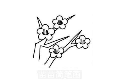 梅花简笔画大图
