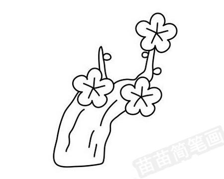梅花简笔画图片大全作品四
