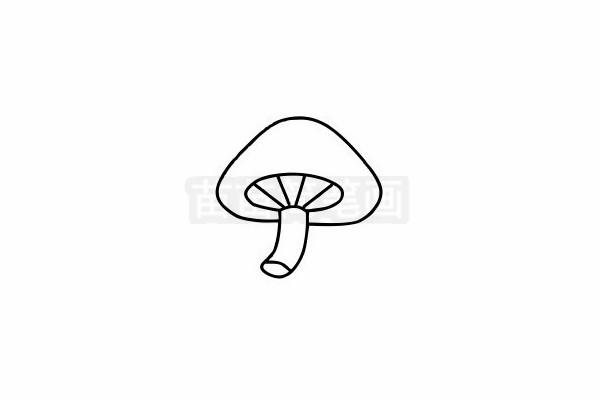 蘑菇简笔画图片步骤六