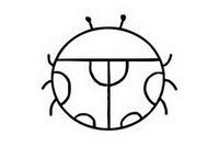 七星瓢虫简笔画图片大全、教程