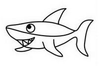 鲨鱼简笔画图片大全、教程
