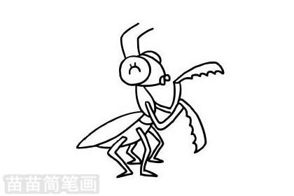 螳螂简笔画图片大全作品二