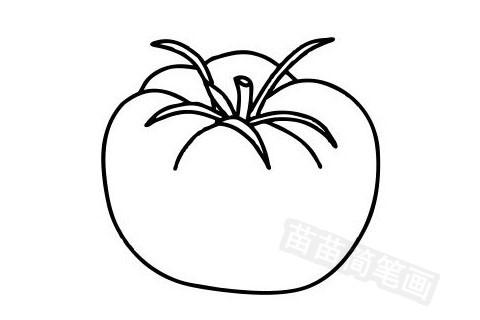 西红柿简笔画图片大全作品五