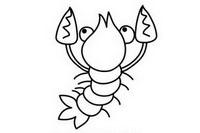 龙虾简笔画图片大全、教程