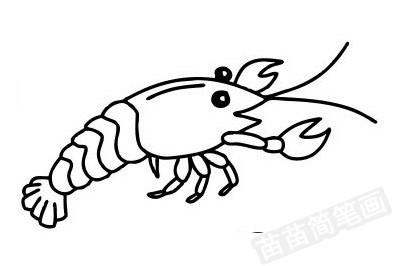 龙虾简笔画图片大全作品四