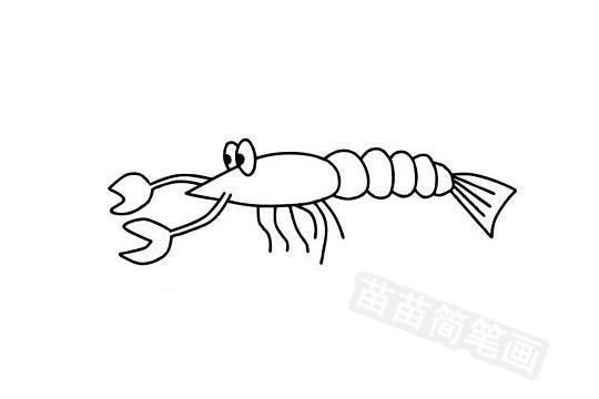 龙虾简笔画图片大全作品五